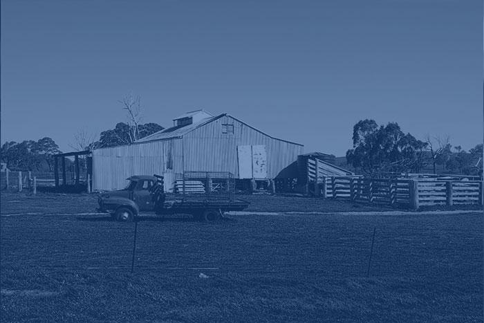 Farm 2,768 – Bilbul